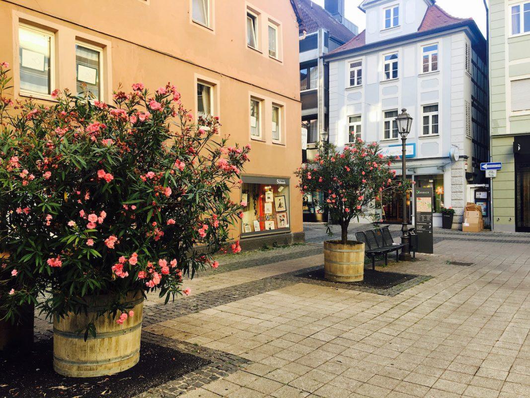 So funktioniert also ANpflanzen in Ansbach? Foto: Larissa Noack