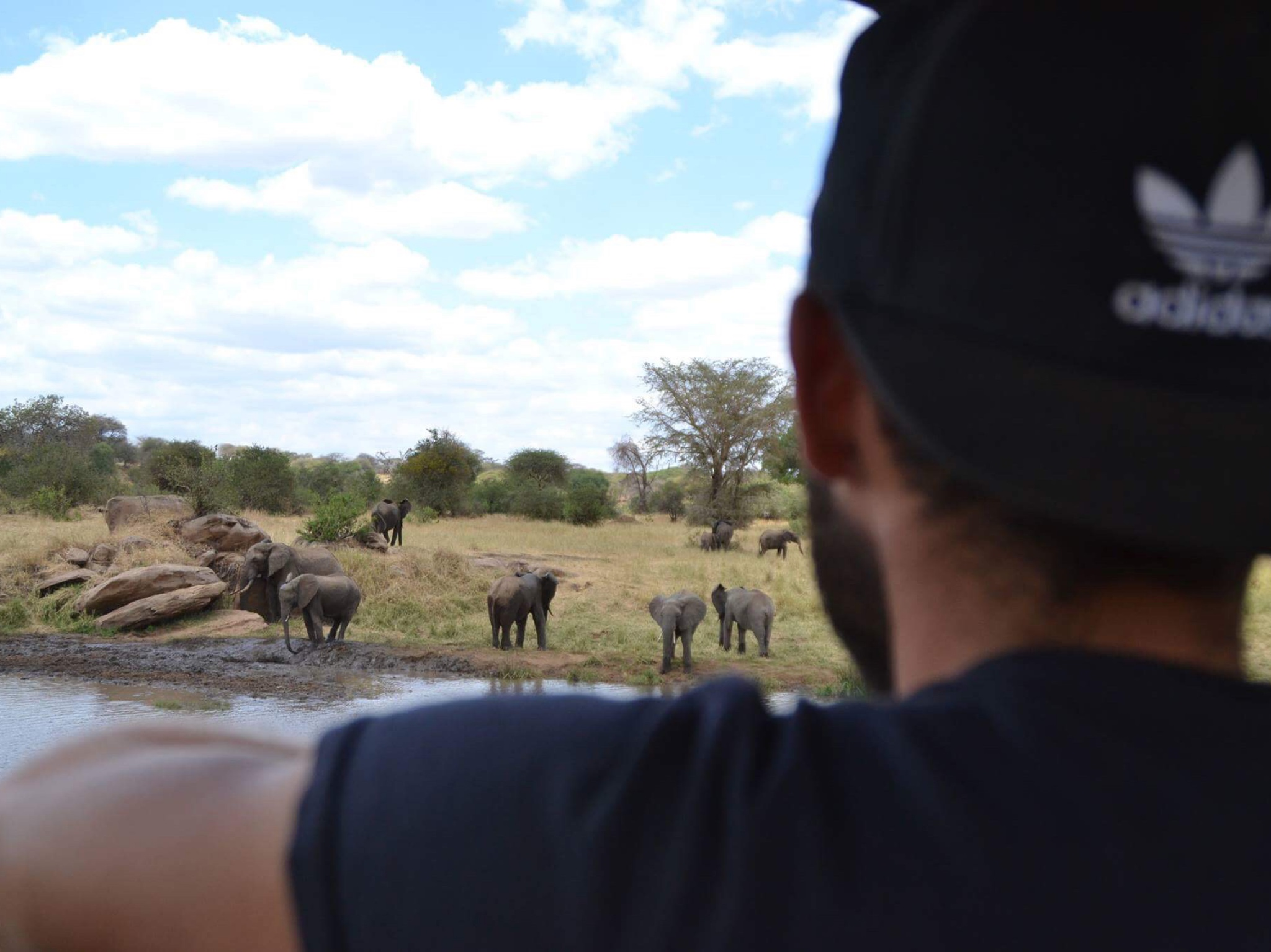 Maximilian im August 2017 in Tanzania, im Arusha Tarangire Nationalpark, der größten Area der freilebenden Elefanten weltweit (3000 Tiere). Foto: Emilia Stahl