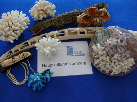 Heute ist Welttag des Artenschutzes. Foto: Hauptzollamts Nürnberg.