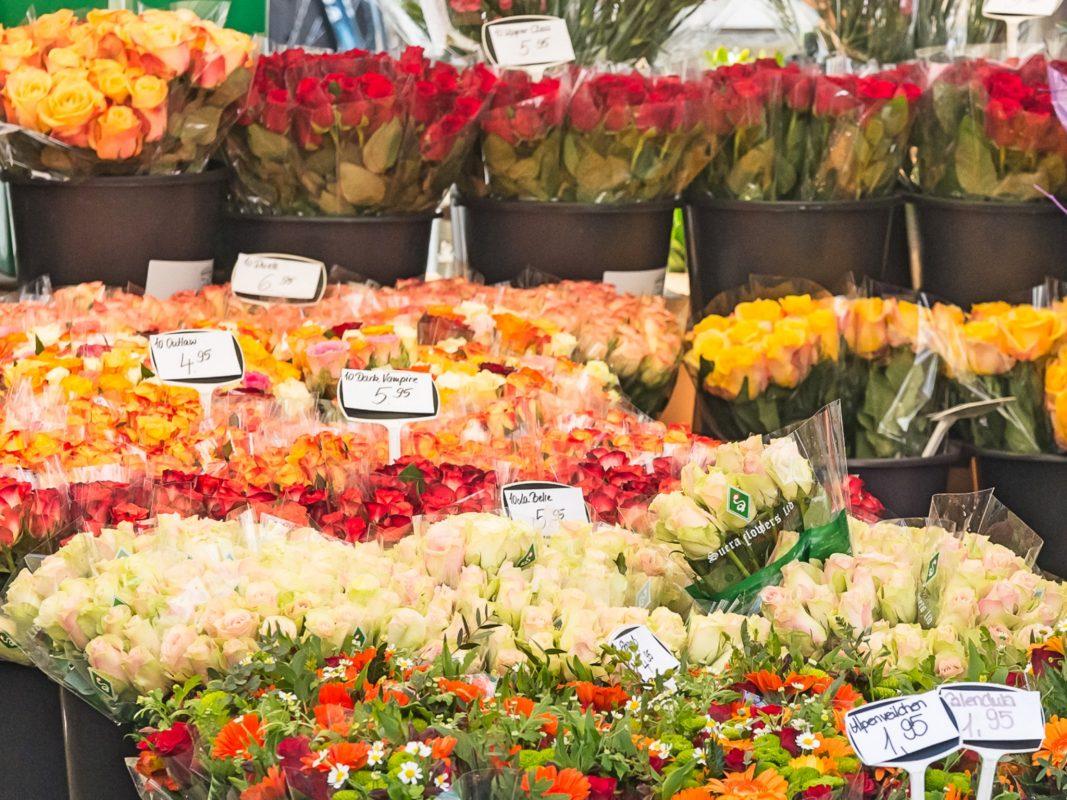 Blumen für den Muttertag. Foto: Pascal Höfig.