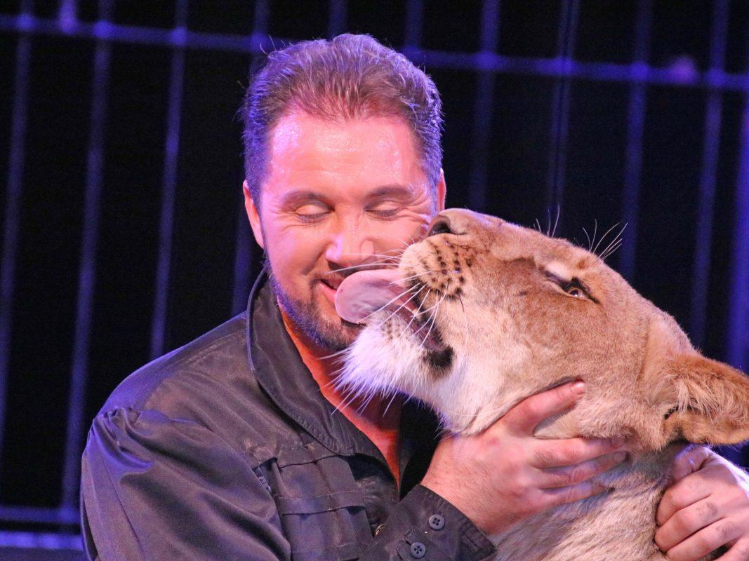 Raubtierflüsterer Martin Lacey und die Löwin Clio im Circus Krone. Foto: Astrid Reuber