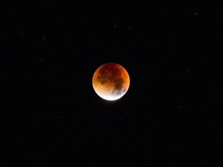 Ein roter Mond. Foto: Pascal Höfig