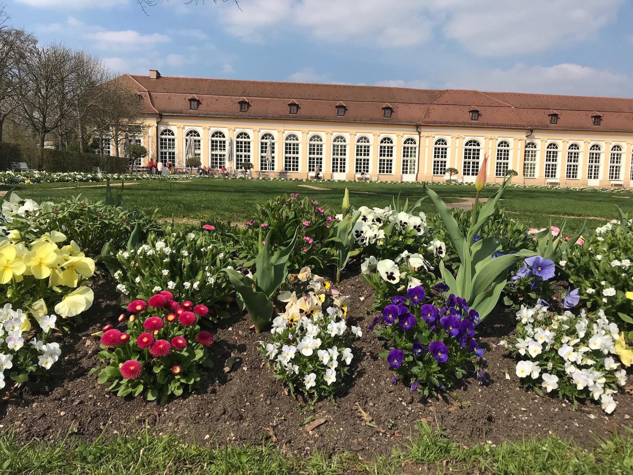 Der Hofgarten im Frühling. Foto: Nico Jahnel