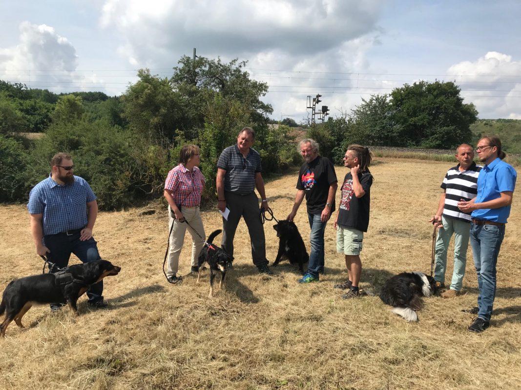 Die OLA will eine Hundewiese auf einer unbenutzten Grünfläche der Stadt Ansbach einrichten. Foto: Nico Jahnel