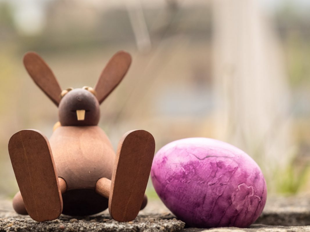 Frohe Ostern! Foto: Pascal Höfig