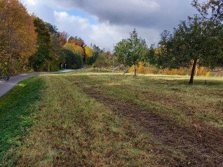 Teilbereich der Fläche zwischen Kneippbad und Süd-Ost-Tangente. Foto: OLA